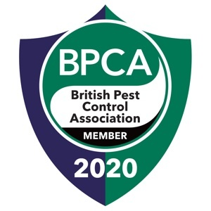 Professional Pest Control Treatments in Leeds, Ilkley, Otley and Wetherby